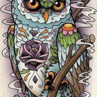Цветная сова япония