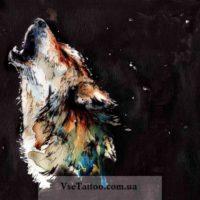 идея волка для тату цветной