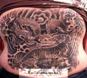 черное белое тату тигр и дракон