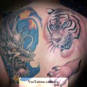 тату дракон и тигр на спине