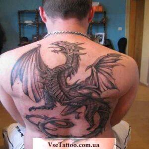 фото татуировки белый дракон на всю спину