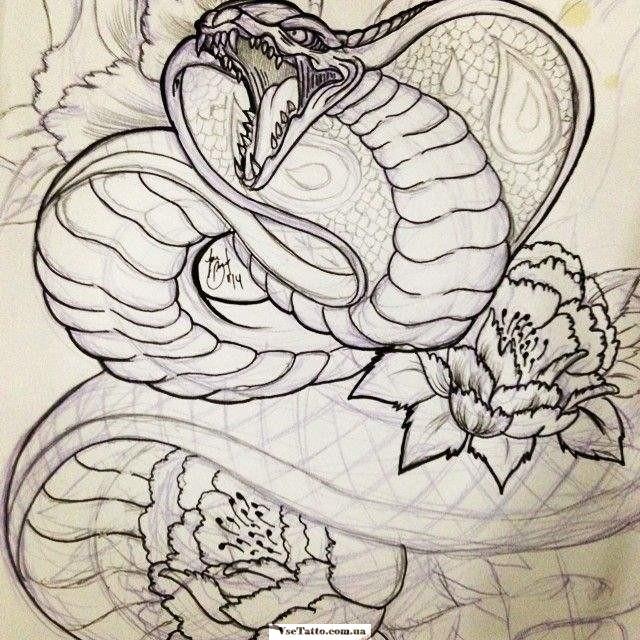 картинки змей карандашом в цветах получилась внушительной